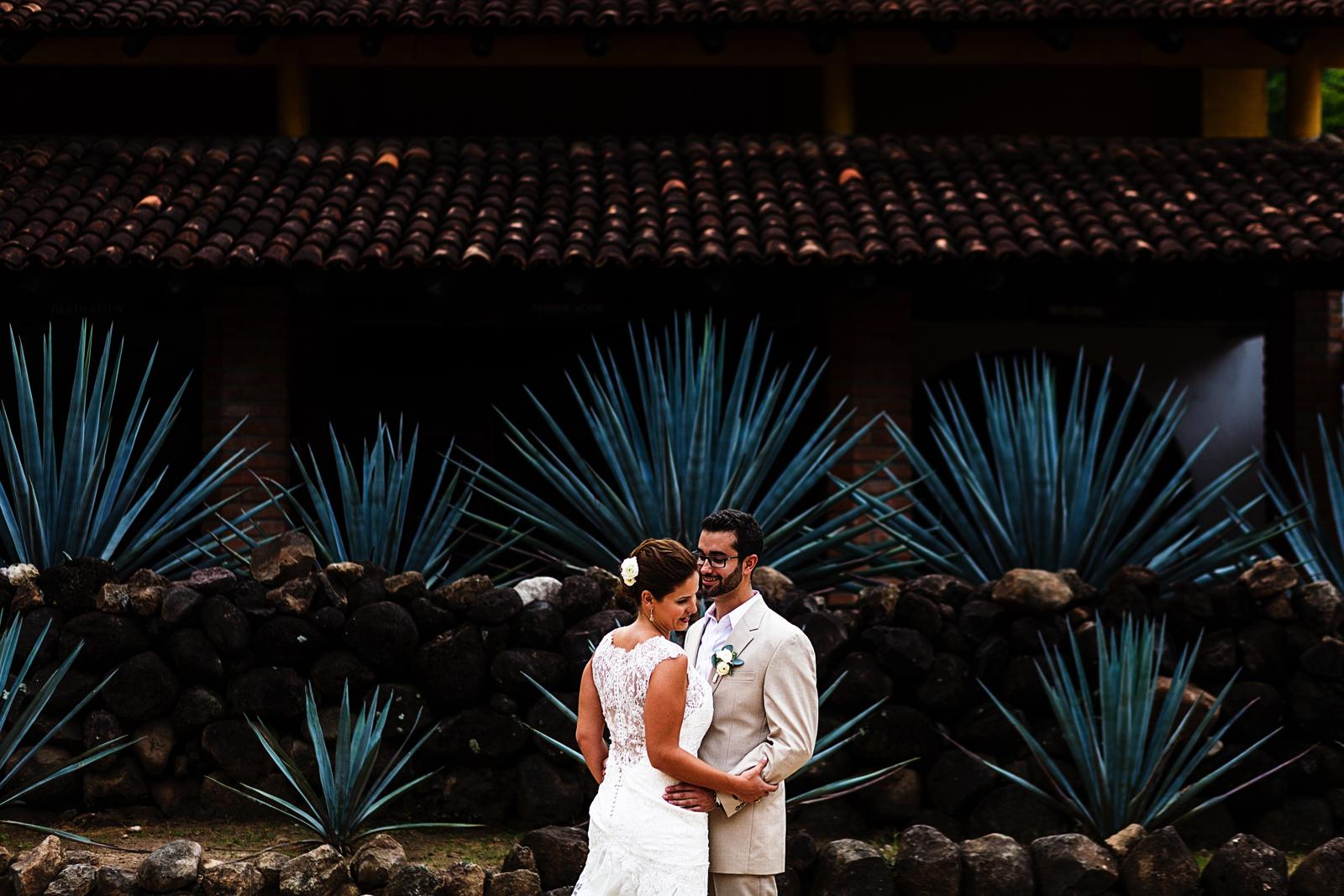 Mismaloya-wedding-agaves-tequila