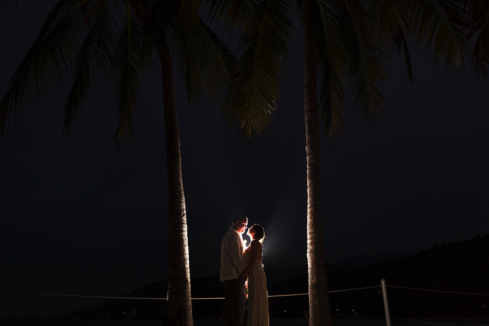 Wedding couple groom and bride's portrait between two palm trees at night