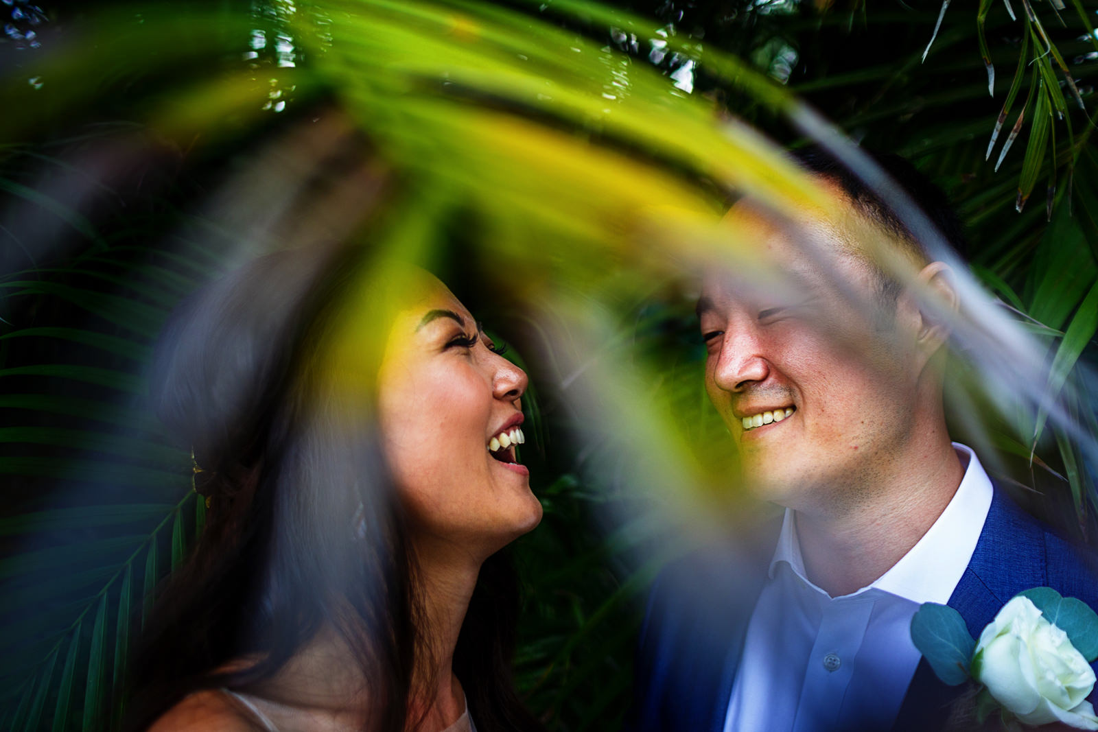 Groom and bride laughing under palm leaves