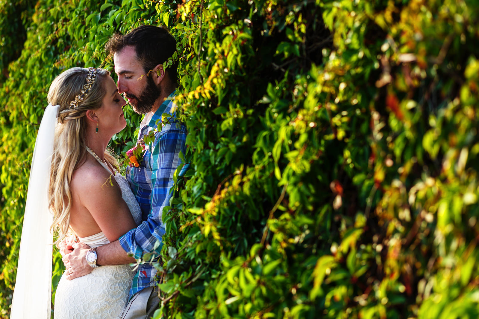 Bride and groom lean against a wall of bushes