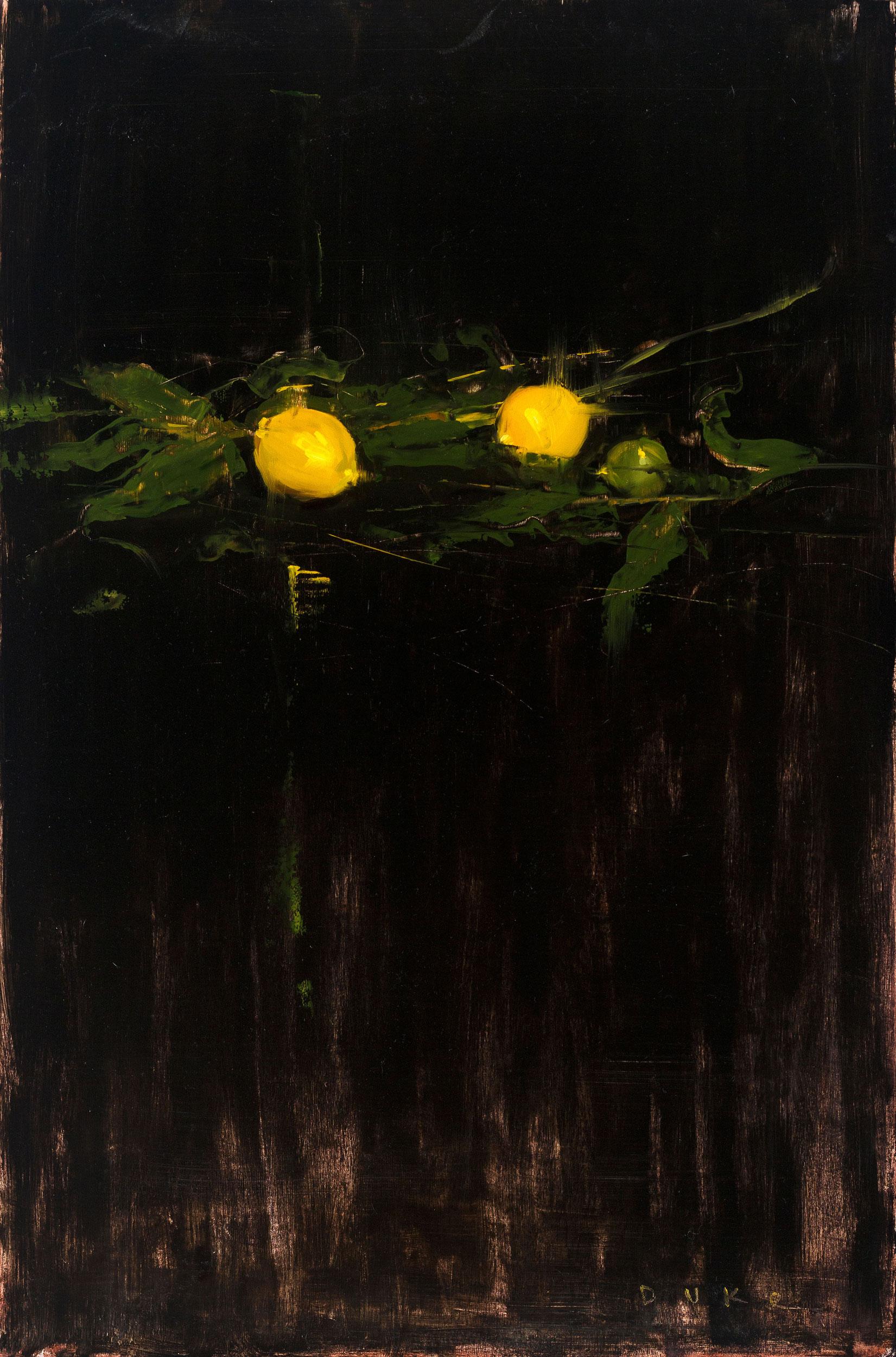 Citrus at Midnight