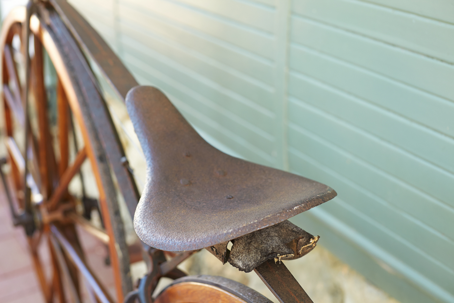 MichauxVelocipede20140202_1547_s.JPG