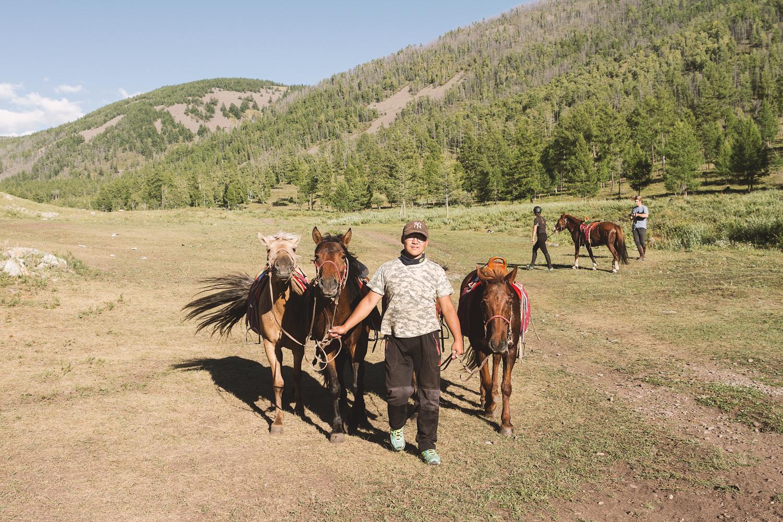 Miga og hestene