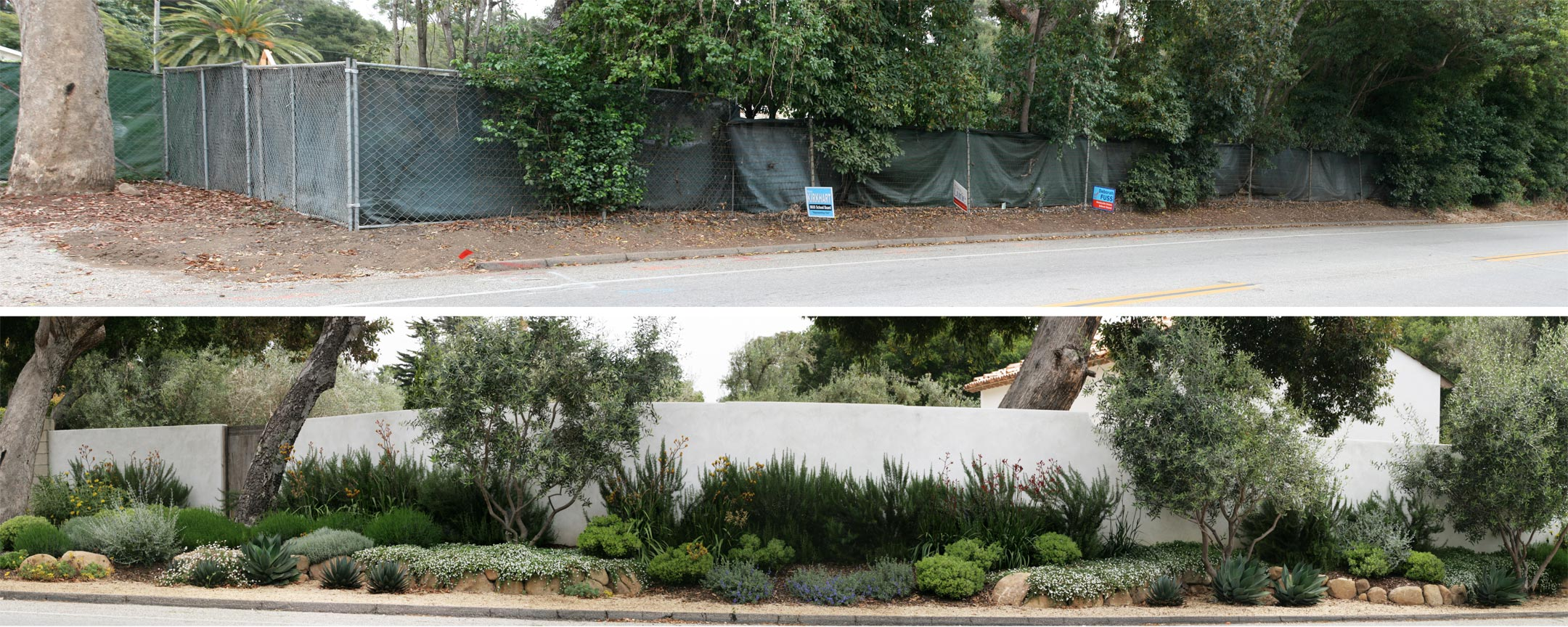front_landscape_before_after.jpg