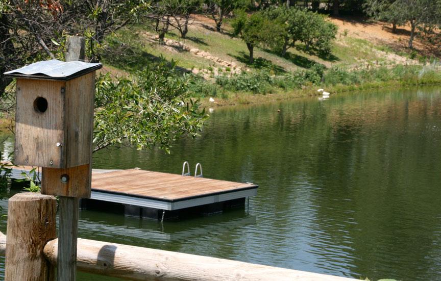 ALF_birdhouse.jpg
