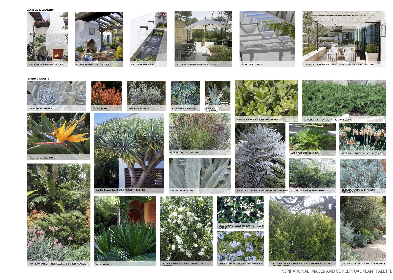 Conceptual Materials, Plants, Inspriation
