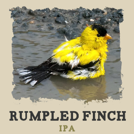 Finch_Ducklamp.png