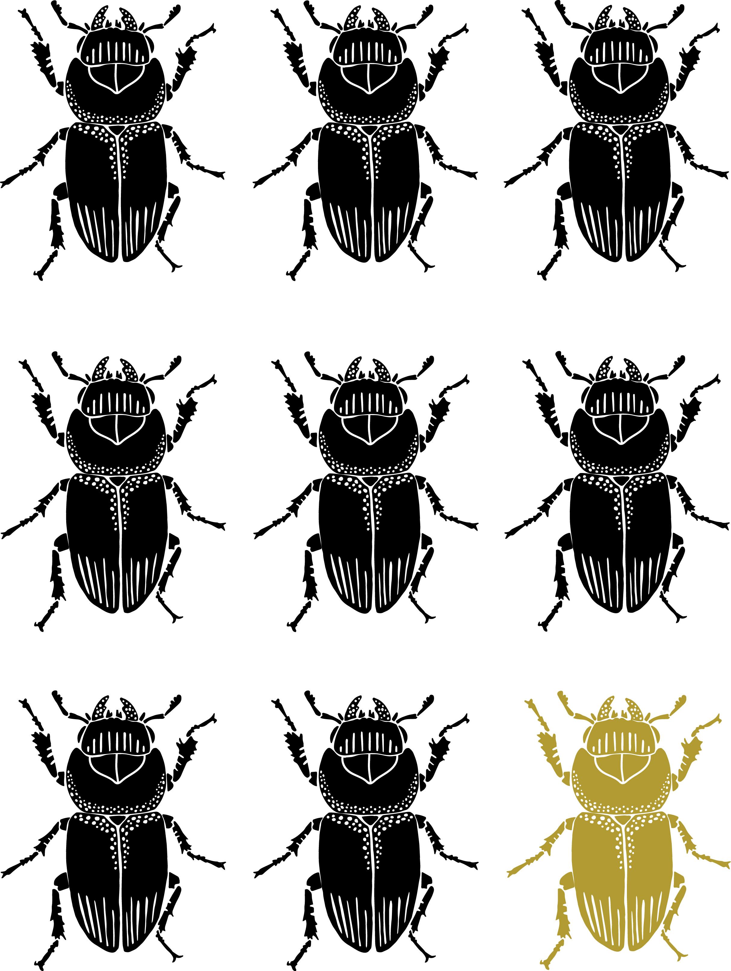Beetle_Poster_18by24.jpg