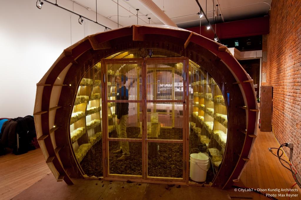 storefront] Mushroom Farm — citylab7