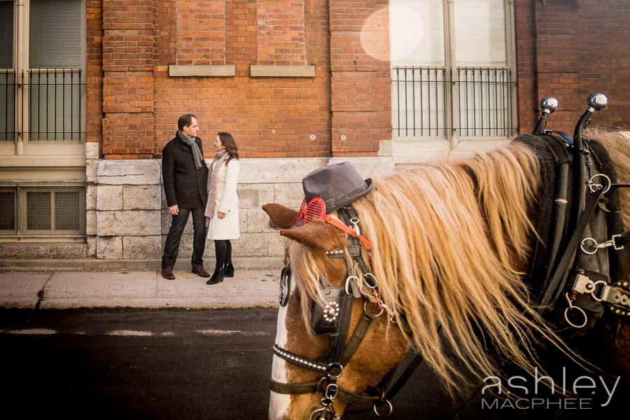 Ashley MacPhee Photography Mercedes Jean Philippe Old Montreal (7 of 11).jpg