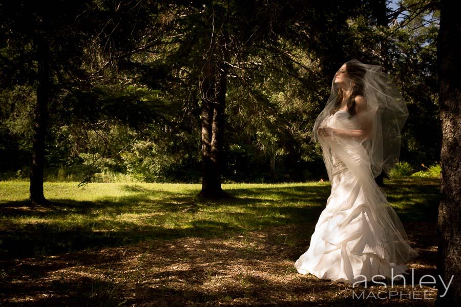 Ashley MacPhee Photography APhoto (15 of 41).jpg