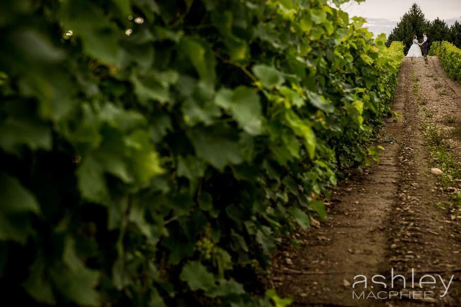 Ashley MacPhee Photography APhoto L'orpailleur (14 of 48).jpg