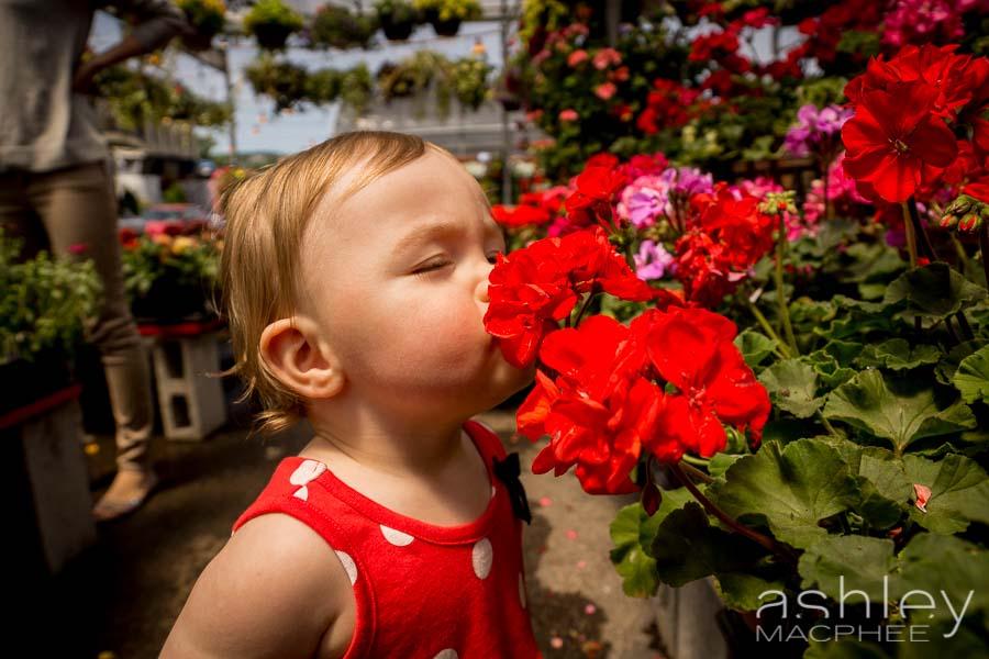 Ashley MacPhee Photography Atwater Market Family Portrait (16 of 17).jpg