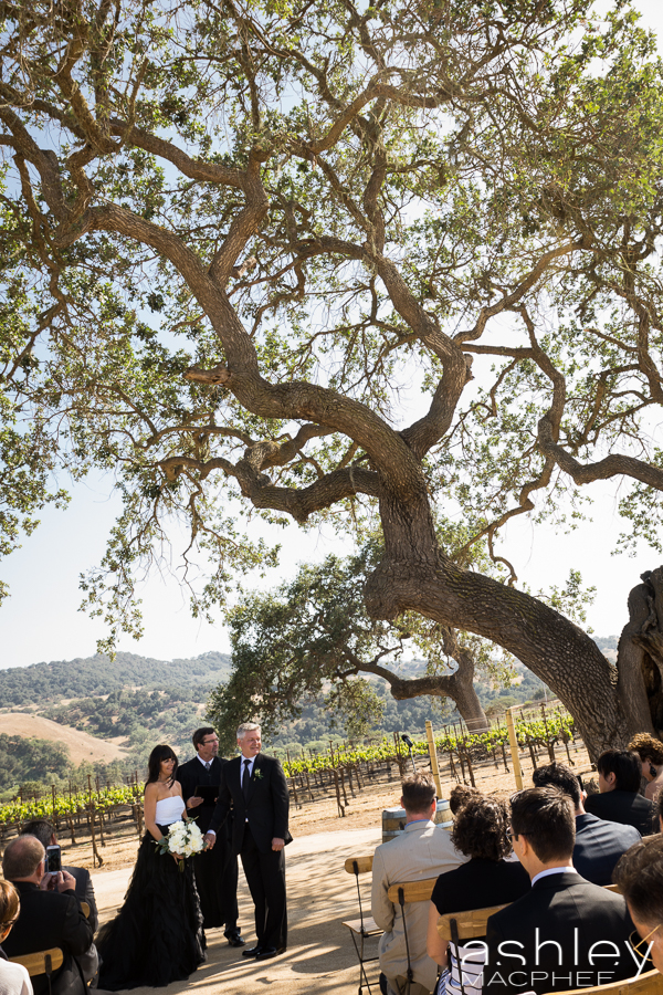 Ashley MacPhee Photography Santa Ynez Sunstone Winery Wedding (67 of 144).jpg