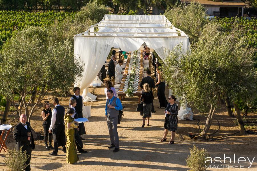 Ashley MacPhee Photography Santa Ynez Sunstone Winery Wedding (86 of 144).jpg