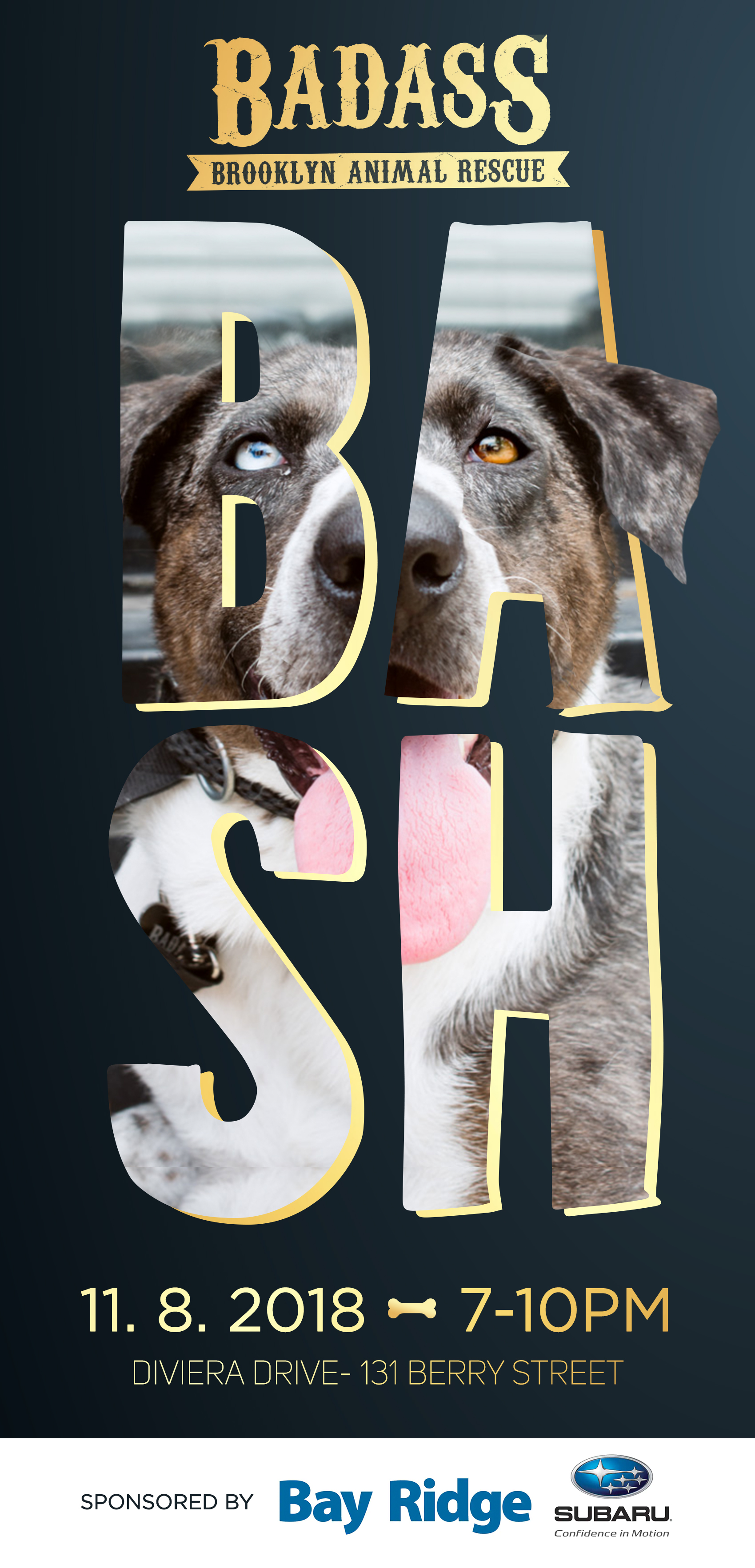 BADASS_BASH._STD.jpg