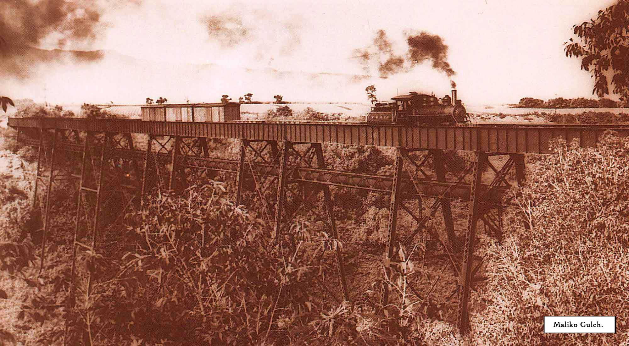 7.-Train-over-Maliko-Gulch(captioned).jpg