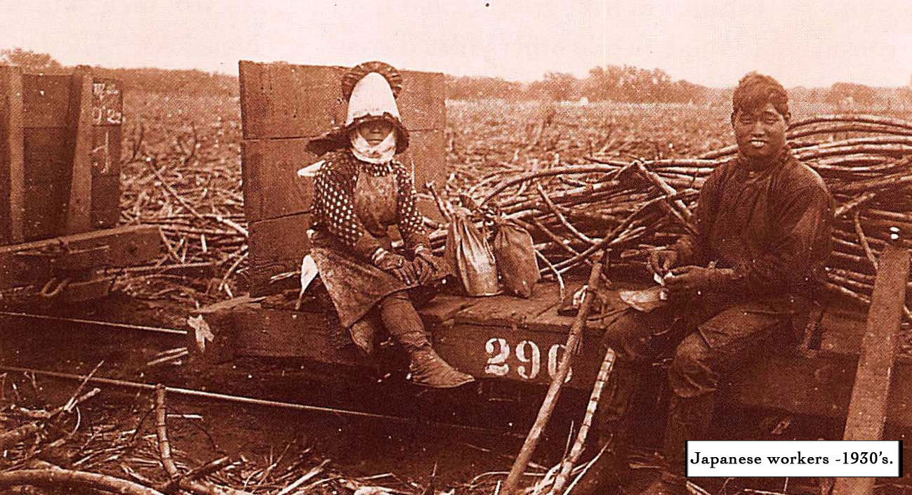 10.-Japanese-Sugar-Field-Workers(captioned).jpg