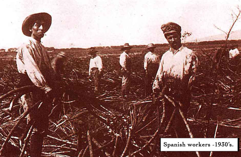 11.-Spanish-Sugar-Field-Workers(captioned).jpg