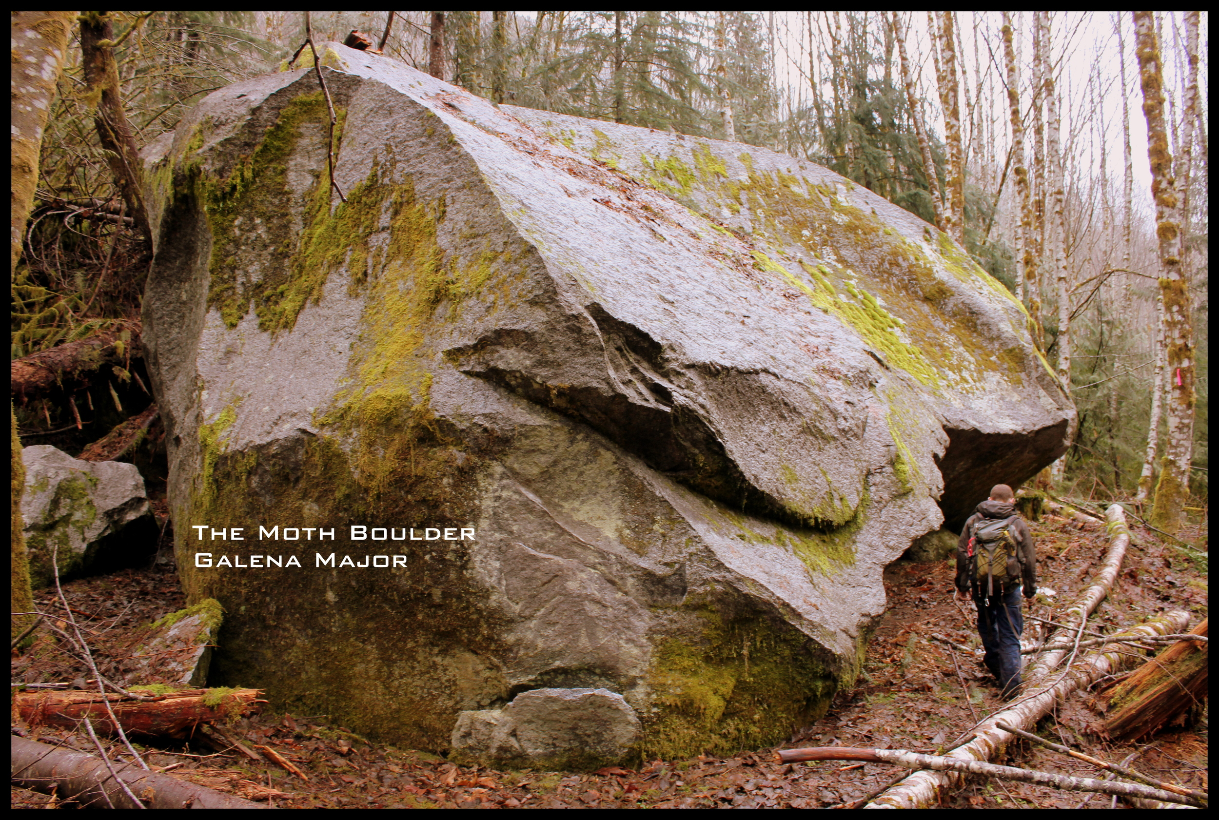 Jesse Evans expouldering near The Moth Boulder. This has some sweet lines on it !