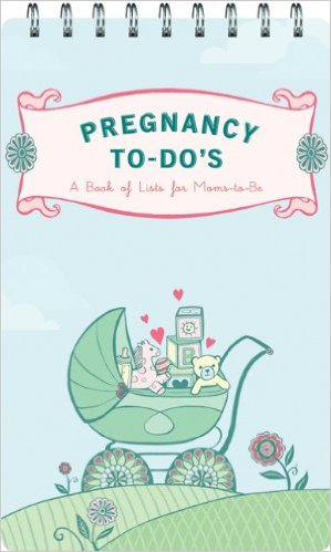 A book of lists for the anxious, well-organized, and pregnan t.