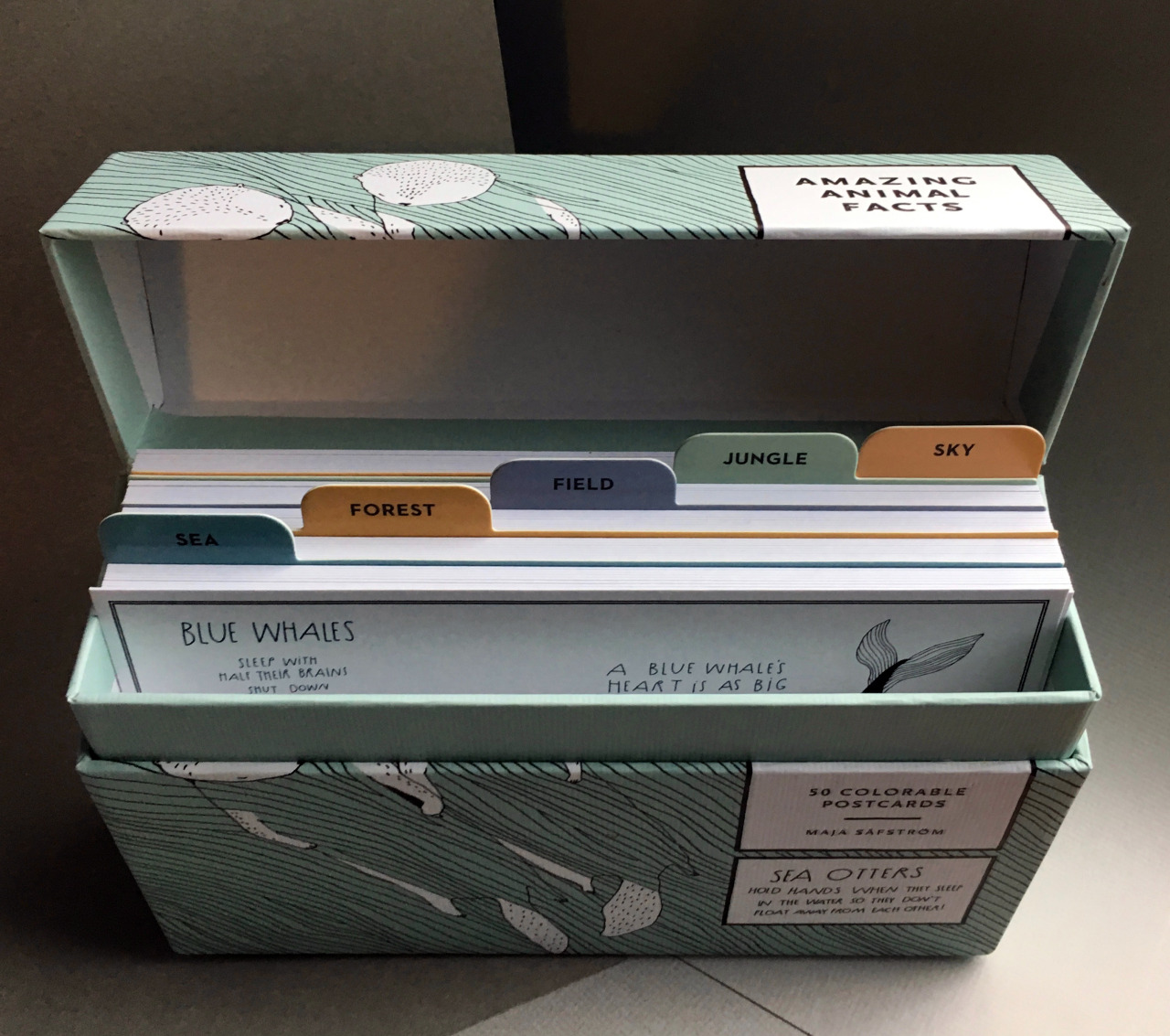 Instead of recipes for ambrosia, chow mein, or Green Bean Bunwiches, this card file box holds charming drawings of zebras, sloths, cockroaches, and flamingos (some are more charming than others).