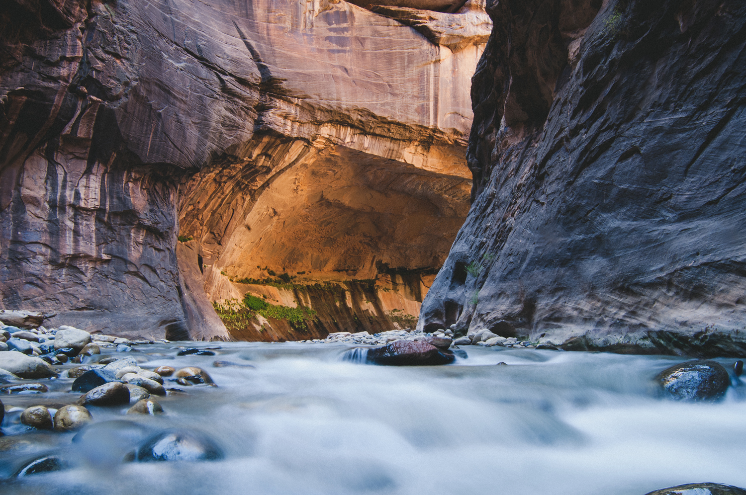 08_Zion2013_0113_FINAL_squarespace.jpg