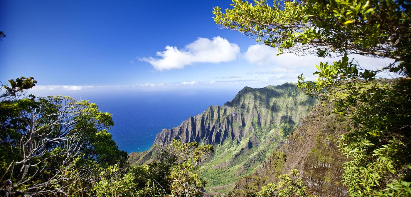 Kauai-Real-Estate-Setting-1.jpg