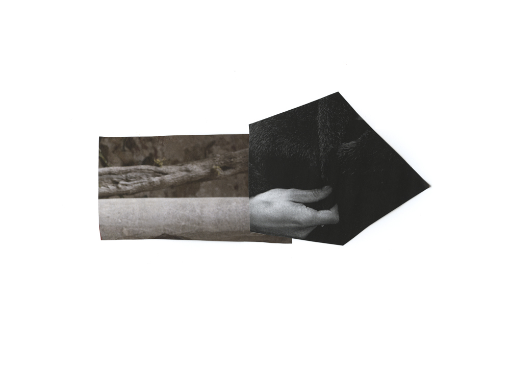 Serrah-Russell-collage-2013-16.jpg