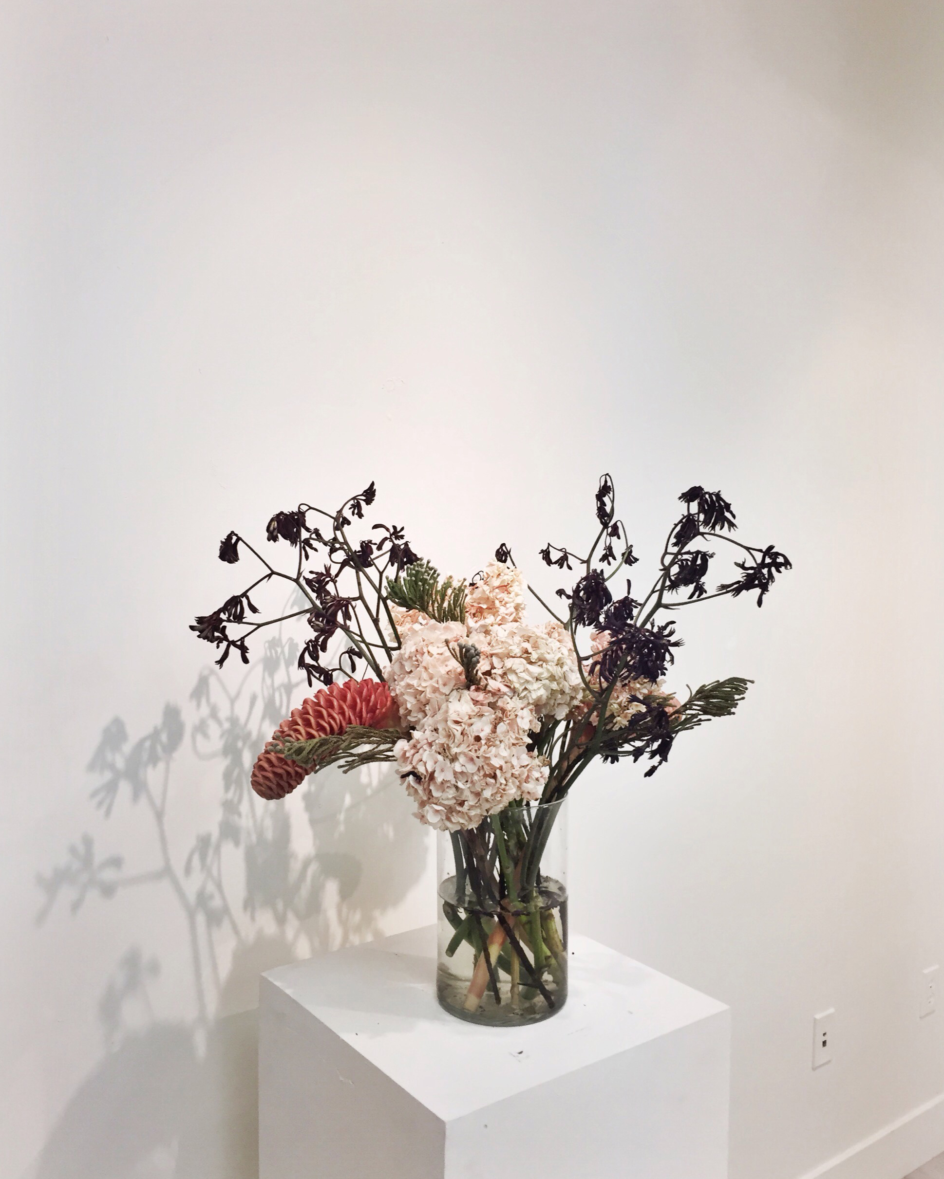 Collaborative Floral Installation   Statement + Info
