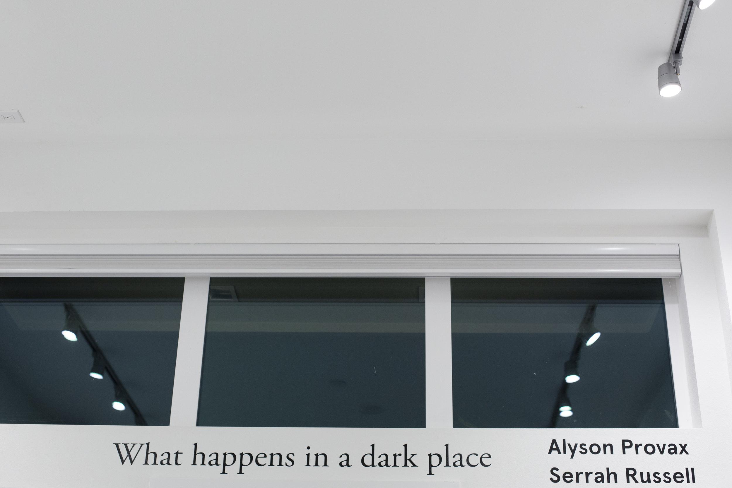 What happens in a dark place, The Vestibule, 2017   Statement + Info