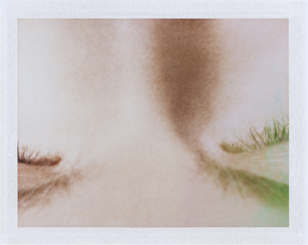 En(trance)  Instant film photograph, 2013   Info + Statement