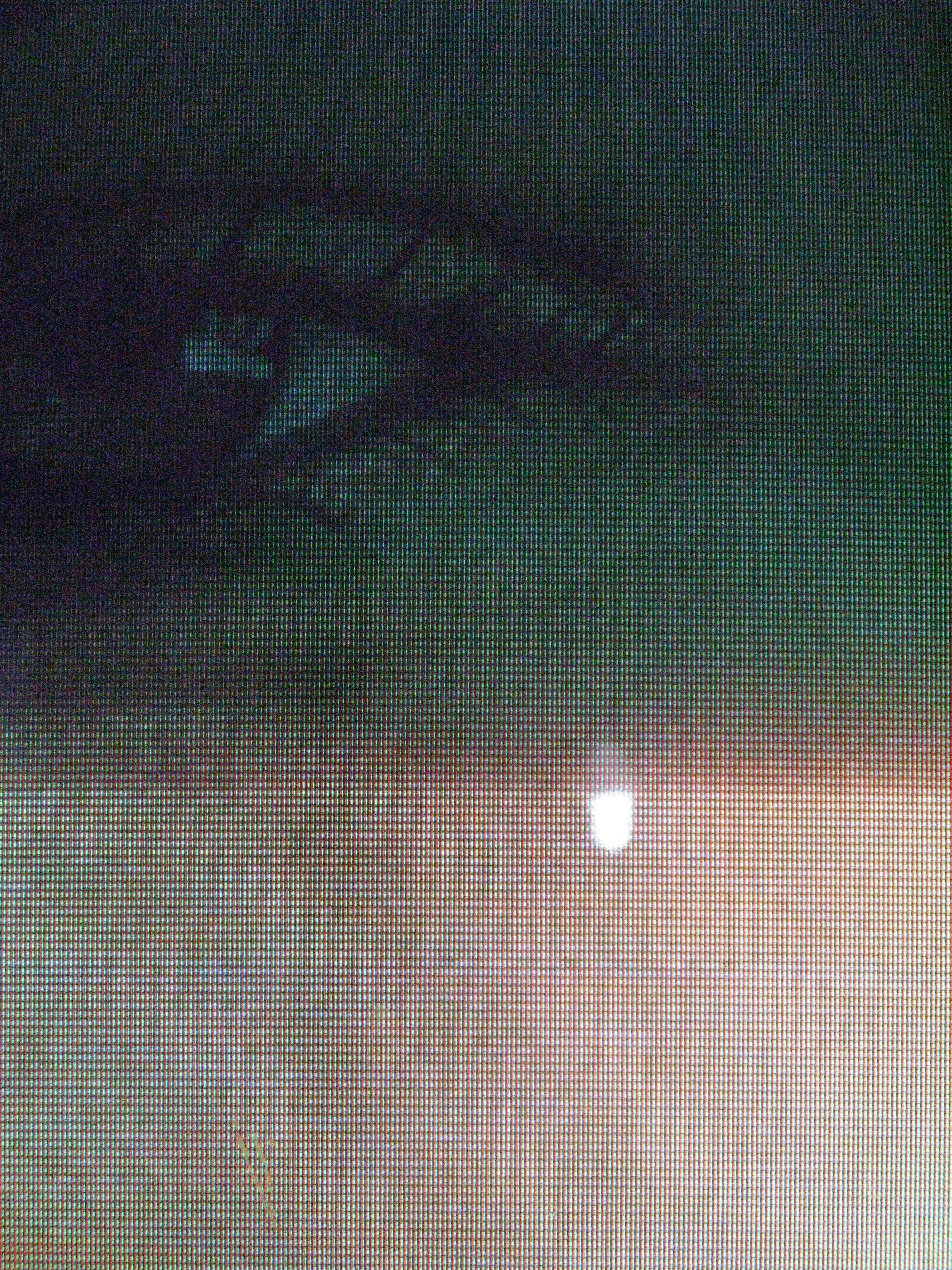 Watching for Transport, 2010