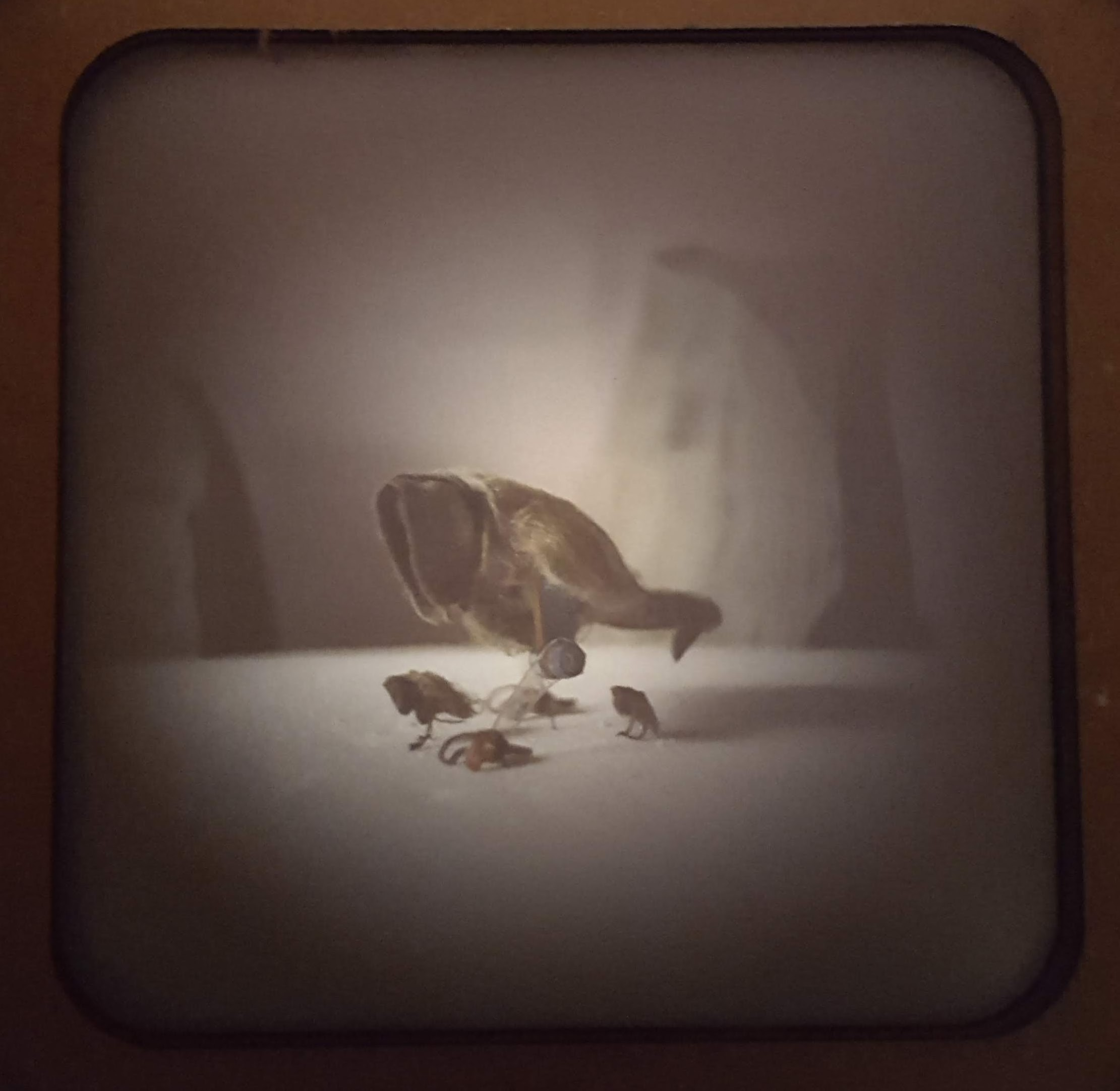 Still from obscura stop-motion