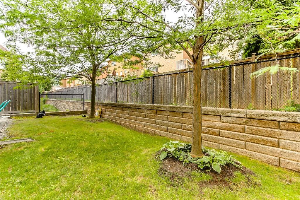 36_backyard4.jpg