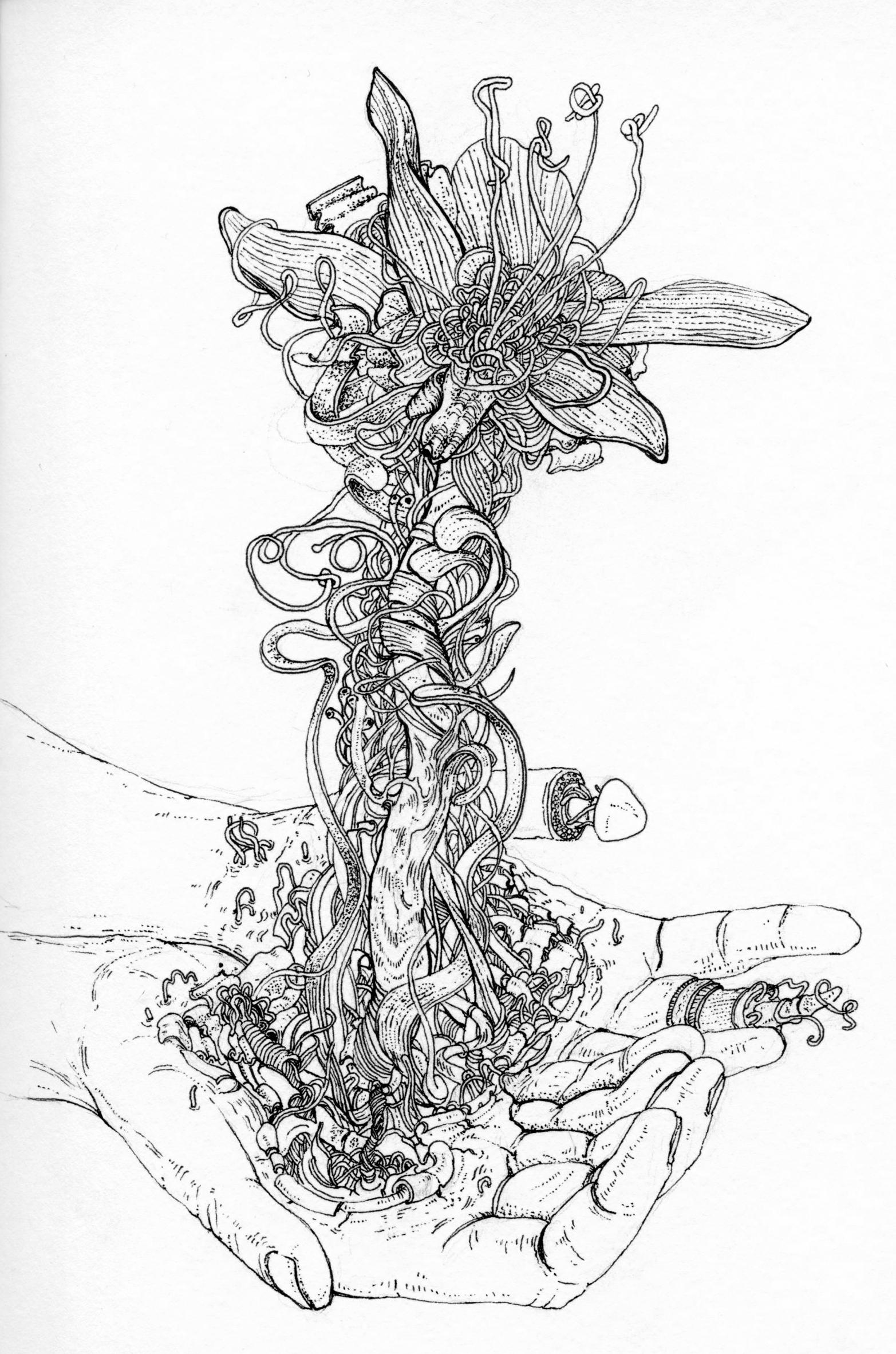 sketchbook014051.jpg
