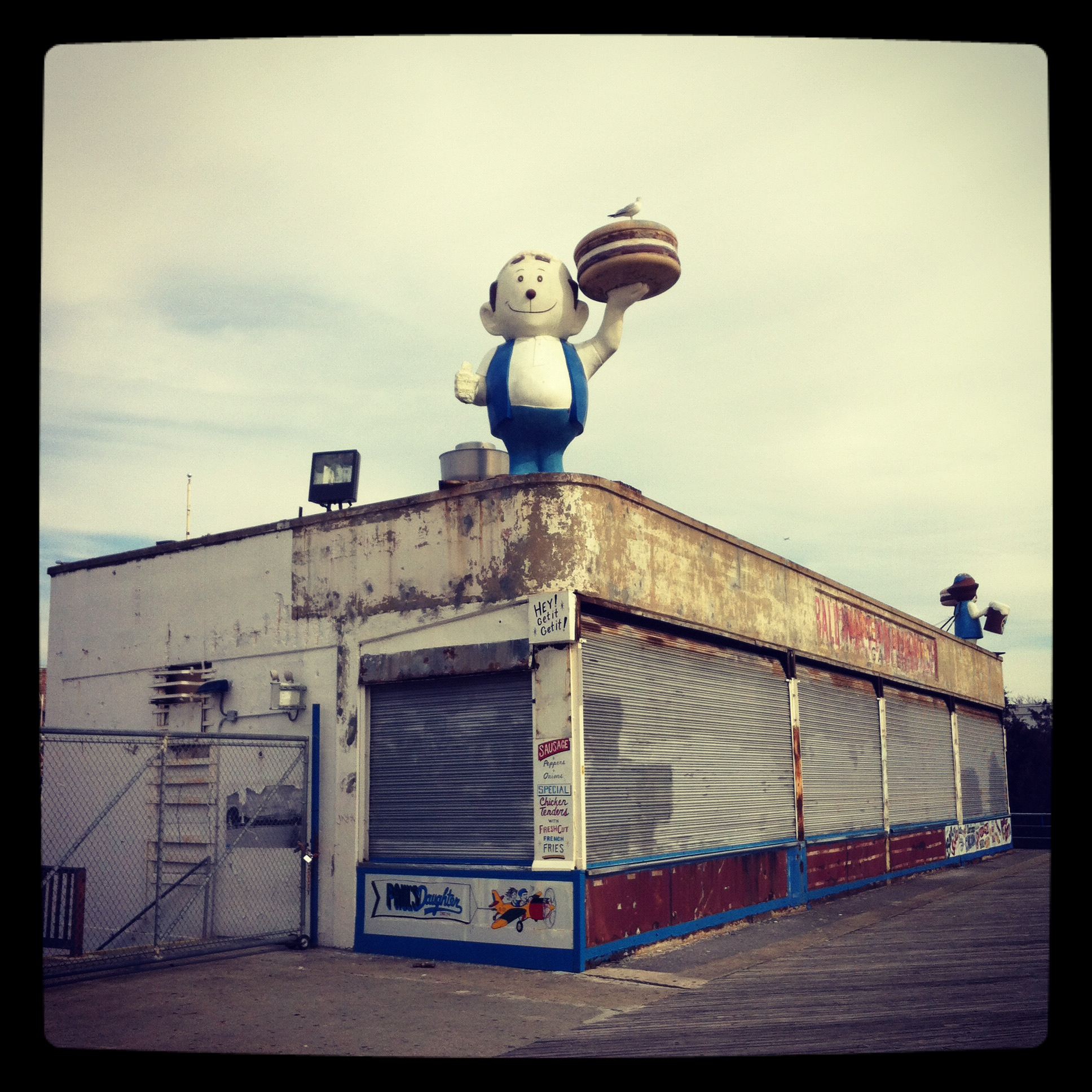 That bird up there must be psyched. Cony Island 2012