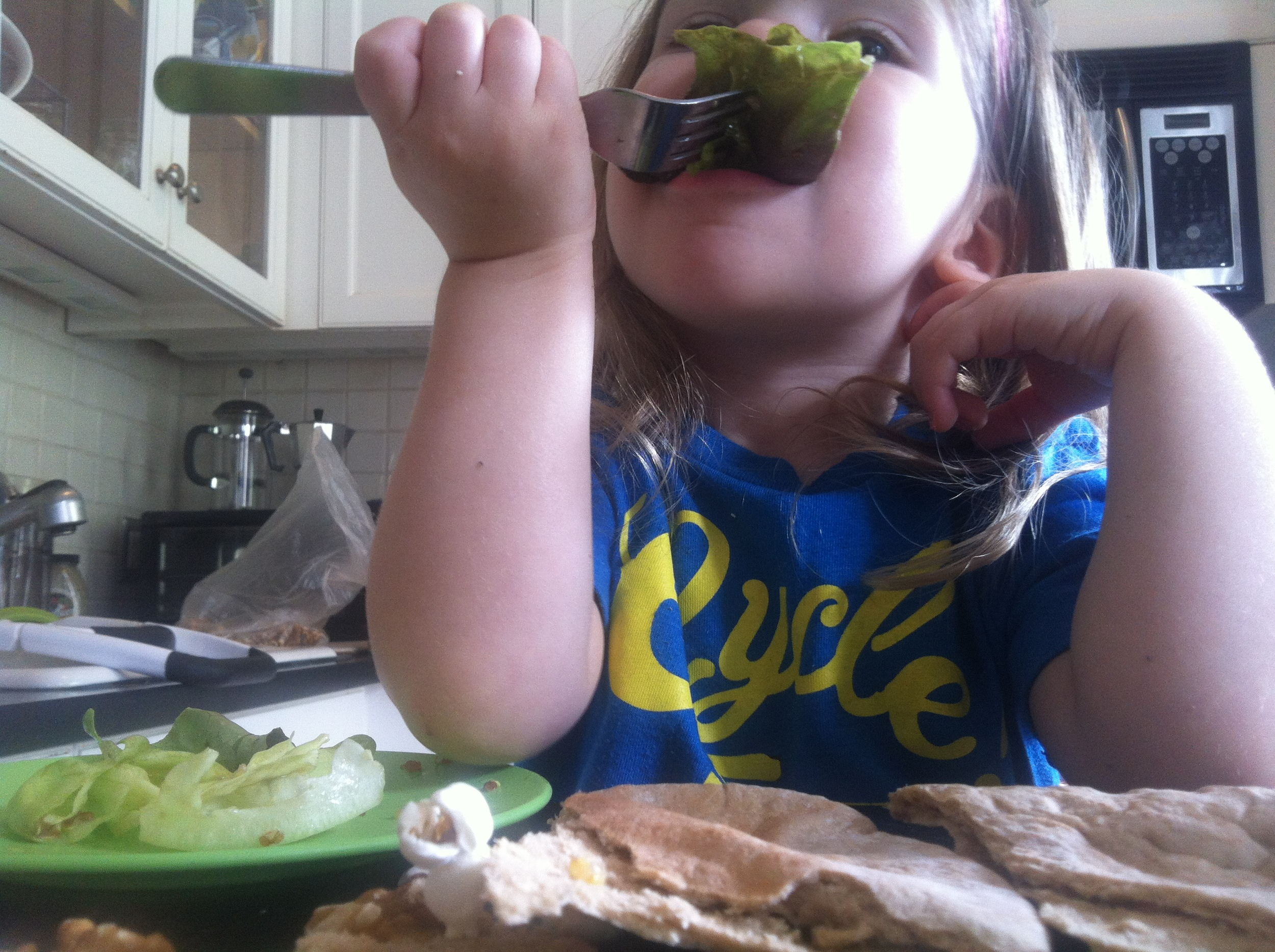Dinosaurs eat salad, I told her.