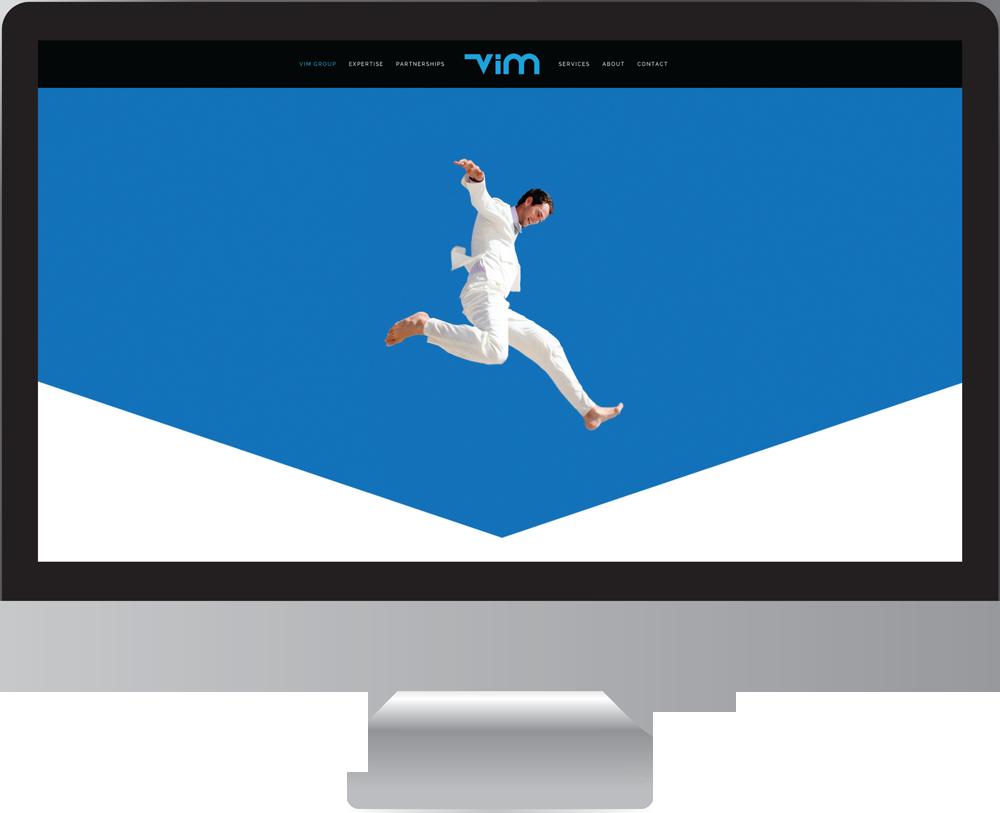 Vim_group_website_design1.png