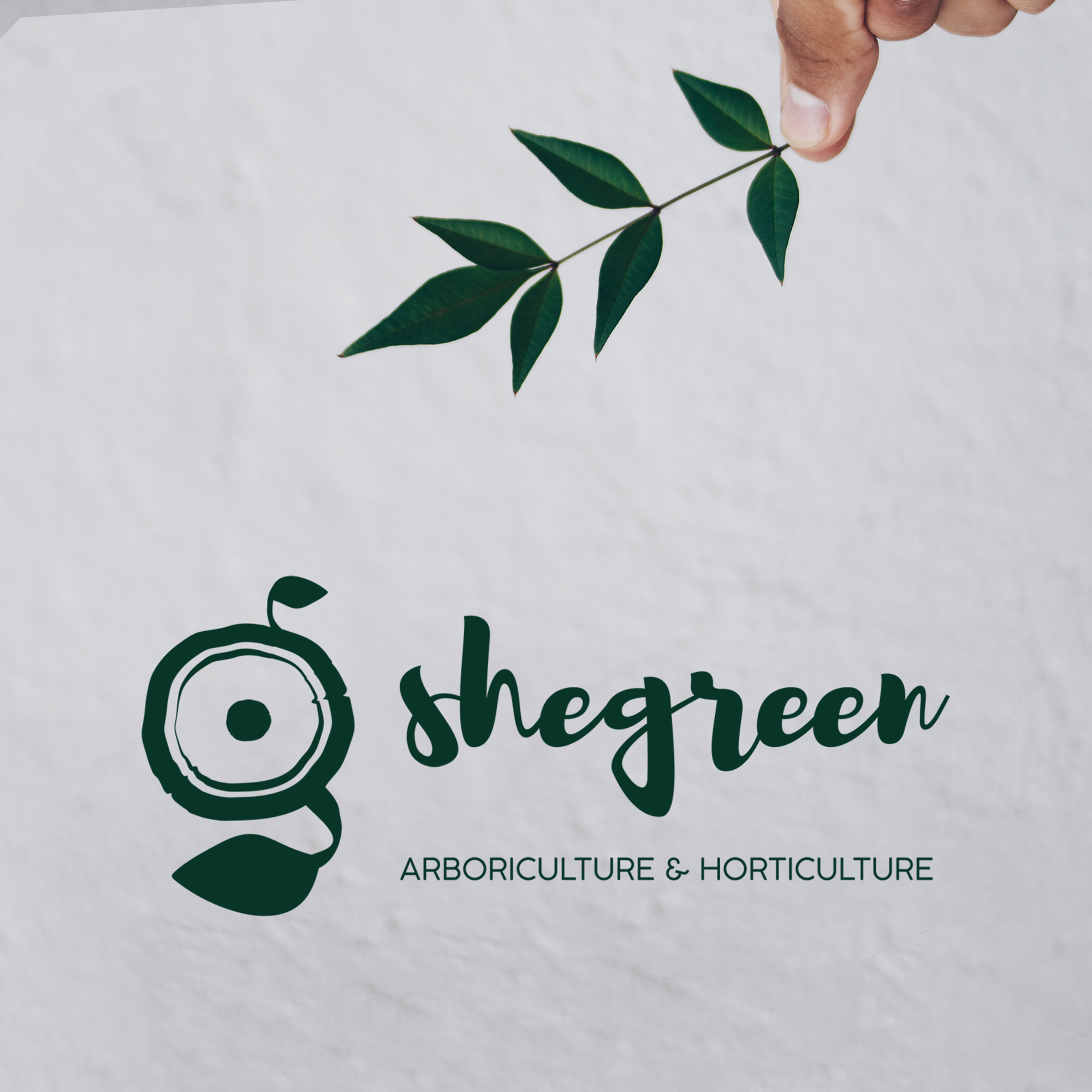 Shegreen Logo Design