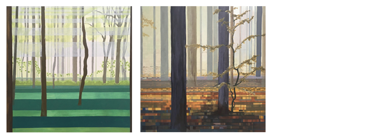 (Above)  Color + Light: Color palettes showing seasonal change within an urban forest