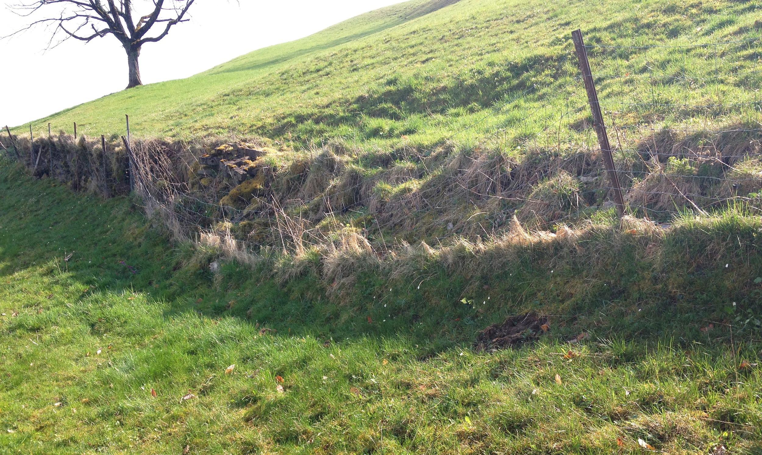 Alte Trockenmauern zerfallen langsam und verschwinden.