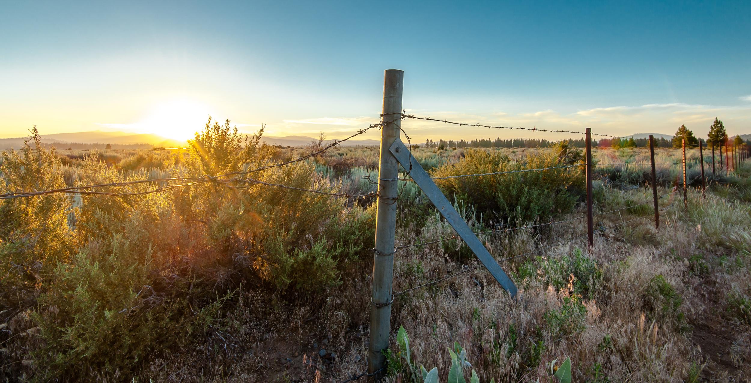 2016_Tahoe_Sunset-1.jpg