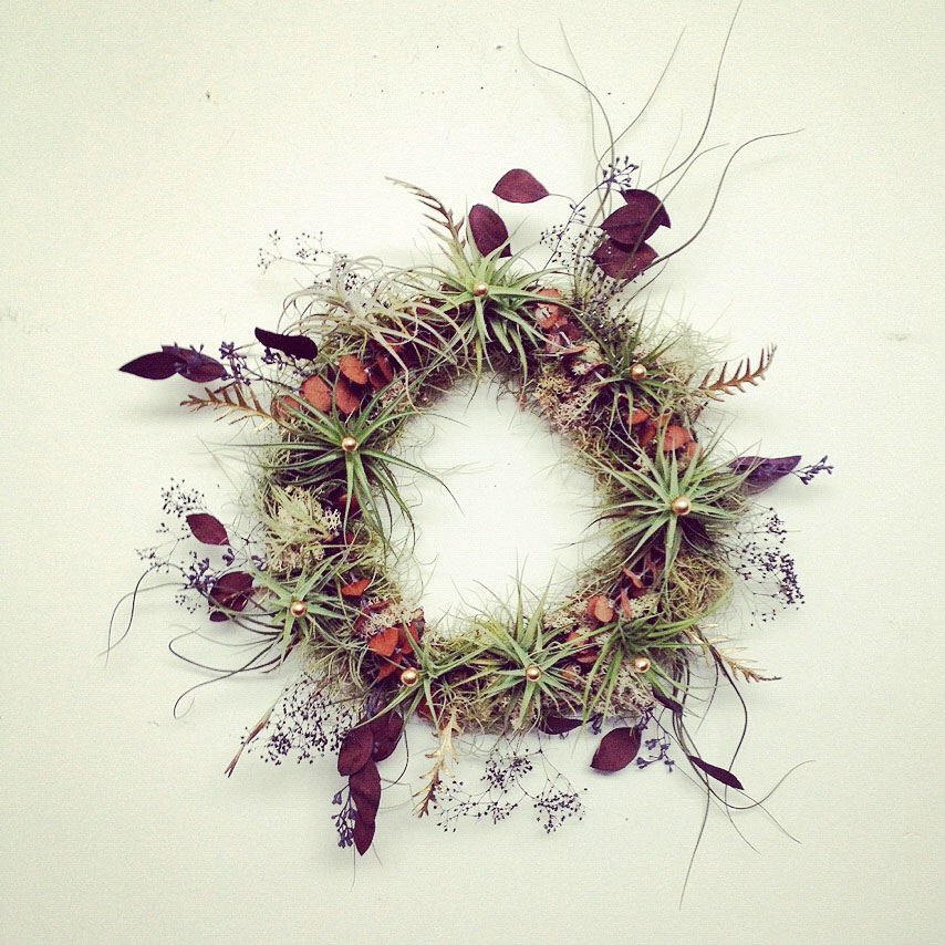 wreath air plants.jpg