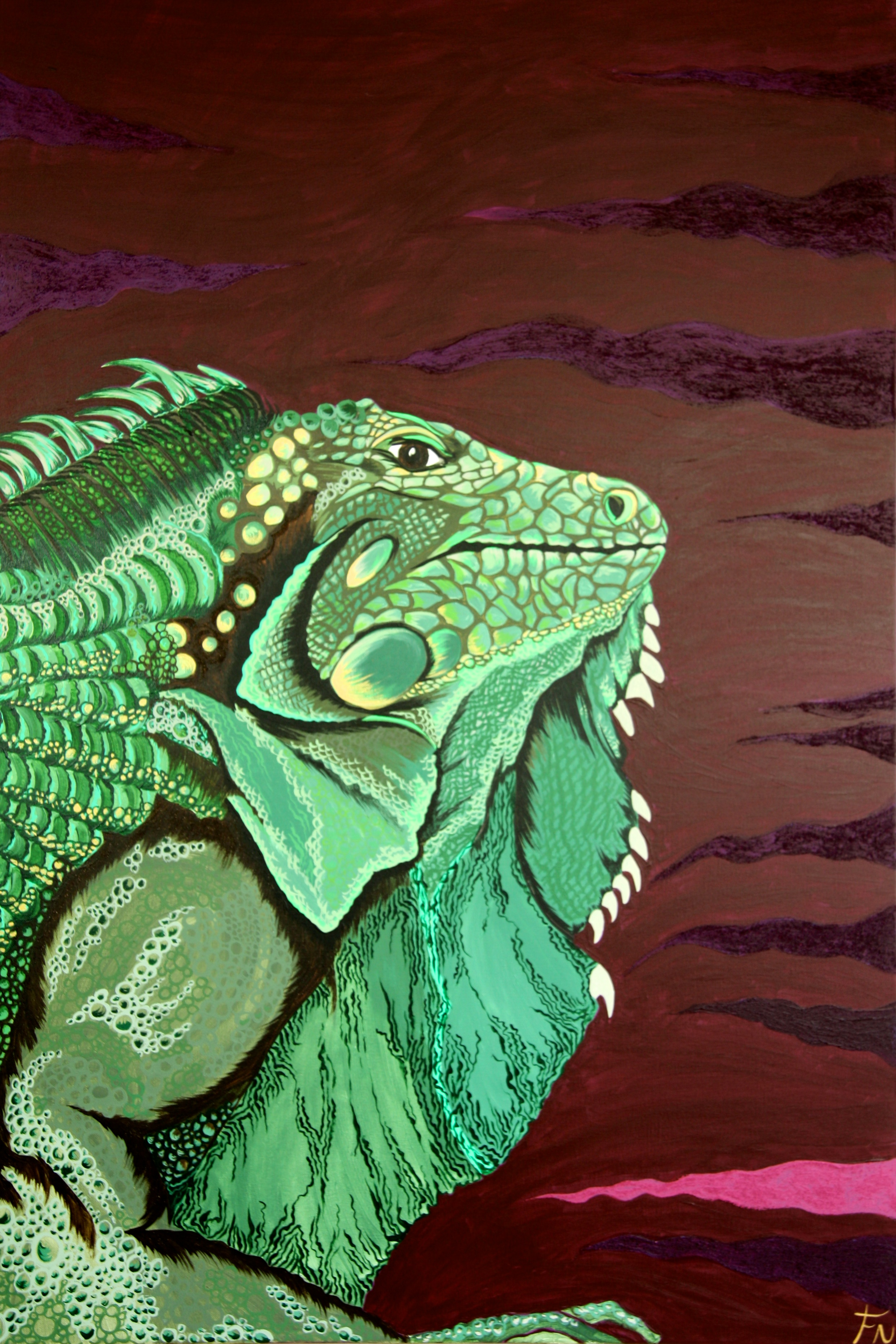 Iguana 120x80cm Contact Feike for pricing info
