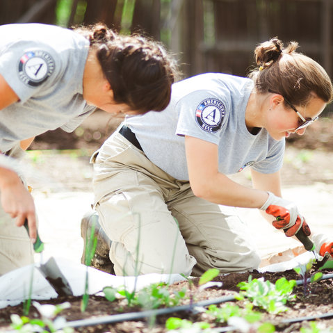 Americorps volunteers help manage Re:Vision's community farms in 2014.