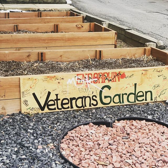 Special s/o to @endorphindenver for dedicating this plot to their incredible veterans! Every week they host a special free class for veterans to make sure they are incorporating activity into their lives and last year they started their first garden. Pa'lante! #sisepuede #veterans #healinggardens #urbangarden