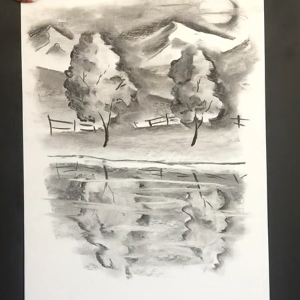 Lesson Sixteen - Charcoal exercise on drawing paper - lakeshore reflection