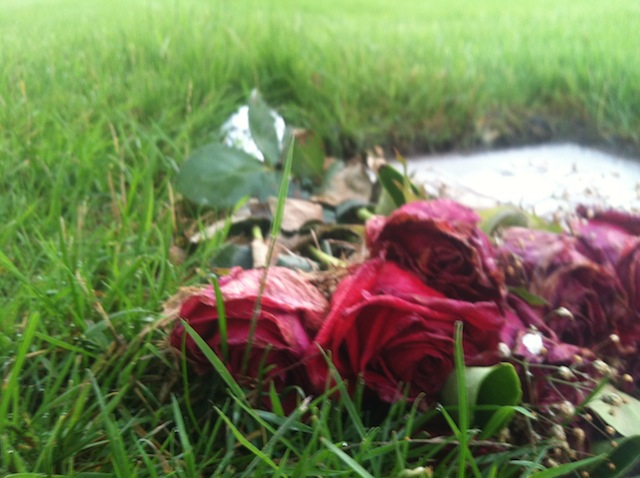 Roses for the departed, kisses to the sky.