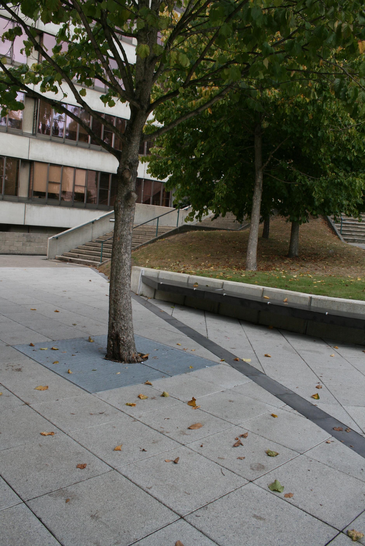The Square, UEA